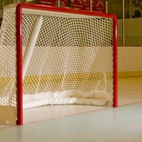 Bigger Nets In NHL's Future?
